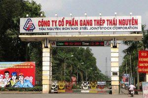 Vì sao hai cựu lãnh đạo Tổng Công ty Thép Việt Nam bị bắt?