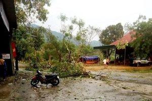 250 ngôi nhà bị tốc mái do lốc xoáy tại Nghệ An