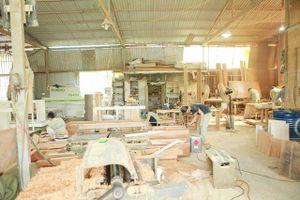 Mất an toàn vệ sinh lao động ở làng nghề mộc Phúc Thọ