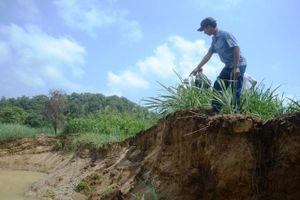 Đất nông nghiệp sạt lở do khai thác cát trên sông Đồng Nai