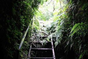 Bí ẩn hang ngầm dưới đình cổ giáp hồ Tây Hà Nội