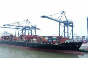 Cảng container Quốc tế Hải Phòng đón chuyến tàu đầu tiên trên hải trình xuyên Thái Bình Dương