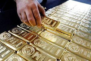 Giá vàng hôm nay 23.4: Vàng miếng giảm mạnh, thế giới vững giá