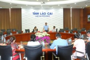 Lào Cai làm rõ đơn tố cáo thầy giáo xâm hại tình dục học sinh lớp 8