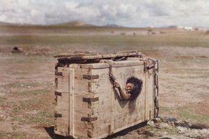 Cô gái bị nhốt giữa sa mạc chết đói, khát và chuyện ám ảnh