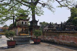 Hải Phòng: Trụ trì chùa Trung Hành dọa thả chó cắn nát mặt phật tử?