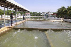 Đà Nẵng: Nguồn nước thô nhiễm mặn vượt ngưỡng