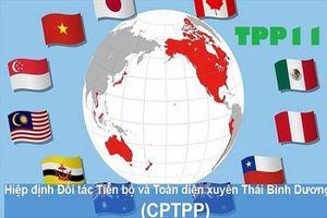 Tận dụng CPTPP để thâm nhập các thị trường khó tính là không dễ