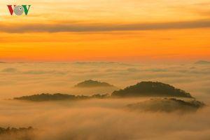 Bình minh Đà Lạt mơ màng mùa sương mây