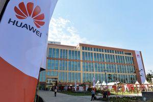 Đại học kỹ thuật top 10 Mỹ 'quay lưng' với Huawei