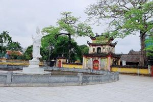 Chính quyền lên tiếng vụ sư trụ trì chùa bị tố dọa 'thả chó cắn nát mặt phật tử'