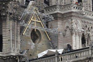 Pháp 'che mưa' cho Nhà thờ Đức Bà Paris
