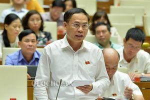 Nguyên Phó Chủ tịch tỉnh làm Phó Chủ nhiệm ủy ban của Quốc hội