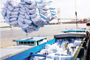 Phi-líp-pin ban hành các quy định mới về nhập khẩu gạo