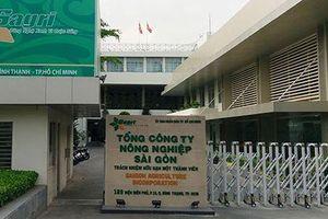 Tổng Công ty Nông nghiệp Sài Gòn liên tiếp 'qua mặt' UBND TPHCM