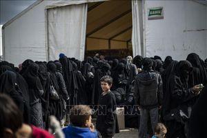 Na Uy sẵn sàng tiếp nhận có điều kiện con của các công dân ủng hộ IS