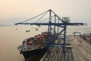 Tàu 'khủng' liên tiếp cập cảng biển Việt Nam, doanh nghiệp hưởng lợi gì?