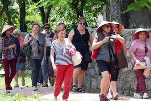 Mua 1,7kg măng cụt, du khách bị đòi 1 triệu: Tin mới