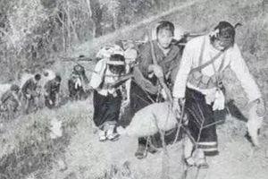 Vứt bỏ lương thực, lính Trung Quốc 1979 nhận bài học xương máu