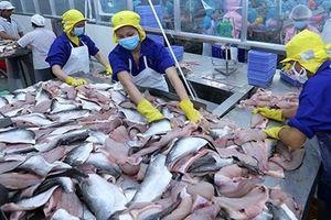 Nhiều doanh nghiệp cá tra Việt Nam 'sụp đổ hy vọng' với POR 14