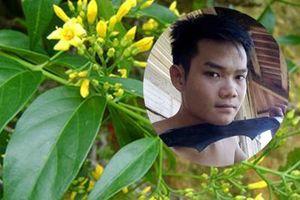 Nghi can sát hại em gái ở Điện Biên ăn lá ngón tự tử