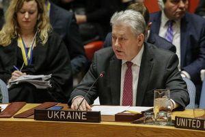 Nga - Ukraine 'khẩu chiến' về sắc lệnh hộ chiếu của Tổng thống Putin