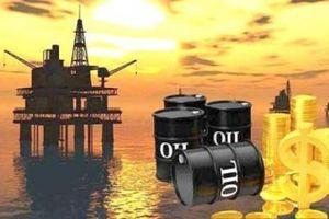 Đức, Ba Lan và Slovakia ngừng nhập khẩu dầu của Nga