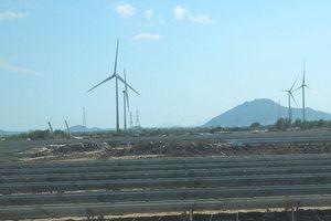 Khánh thành tổ hợp năng lượng tái tạo lớn nhất Việt Nam