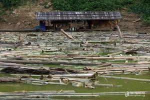 Gỗ, rác 'cưỡng bức' thượng nguồn sông Nậm Nơn