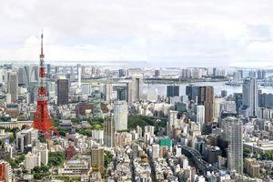 Thành phố của nhân loại