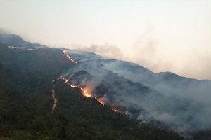Yên Bái: Cấp bách triển khai các biện pháp phòng chống cháy rừng