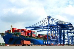Thủ tướng yêu cầu báo cáo về việc cảng Thị Vải - Cái Mép 'chỉ hoạt động 50% công suất'