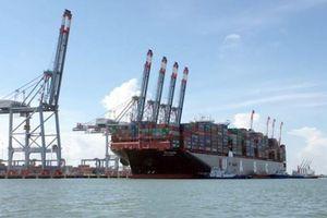 Yêu cầu báo cáo thông tin Cảng Cái Mép - Thị Vải hoạt động lãng phí