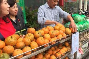 Tỷ phú cam Hà Giang chia sẻ bí quyết xài phân cho cam to, ngọt
