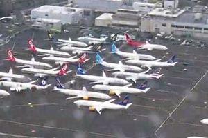 Sốc cảnh Boeing 737 Max chất đống trong kho bãi vì lệnh cấm bay