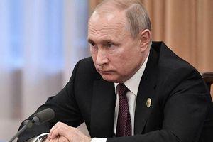 Ông Putin nói có thể gặp tổng thống đắc cử Ukraine, bàn về căng thẳng ở miền đông