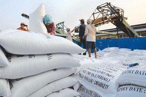 Cơ hội lớn cho DN xuất khẩu gạo Việt Nam sang Philippines