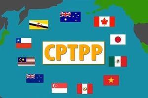 Hiệp định CPTPP mang lại lợi ích to lớn