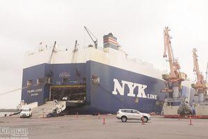 Hải quan Hải Phòng tăng thu hơn 7.000 tỷ đồng, cao nhất toàn Ngành Hải quan Hải Phòng tăng thu hơn 7.000 tỷ đồng, cao nhất toàn Ngành