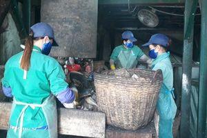 Vụ thai nhi ở Cà Mau: Chính quyền kiến nghị giám định mẫu vật trong các hũ 'hài cốt'