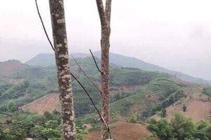 NÓNG: Phát hiện nghi phạm sát hại 2 em vợ ở Yên Bái do mâu thuẫn đất đai chết trong tư thế treo cổ