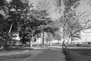 Tháng Tư lịch sử lại tìm về Côn Đảo