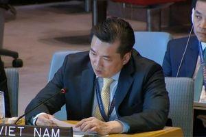 Việt Nam kêu gọi dỡ bỏ sự bao vây phong tỏa của Israel và khôi phục vai trò của Palestine tại Dải Gaza