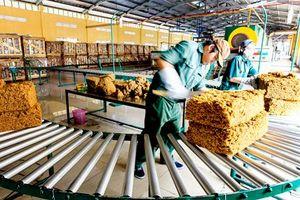 Xuất khẩu cao su tăng mạnh so với cùng kỳ năm trước