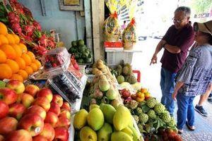 Hà Nội: Hơn 80% cửa hàng kinh doanh trái cây có tem truy xuất nguồn gốc