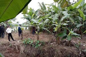 Liên tiếp phát hiện thi thể trên sông Thái Bình: Công an khẳng định chỉ có 3 nạn nhân