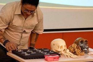 Homo luzonensis: Tổ tiên 'thất lạc' của loài người?