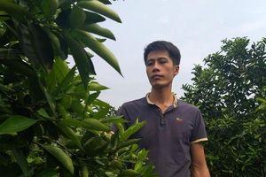 Bỏ lương hơn chục triệu/tháng, trai 8x về làm giàu từ cây ăn quả