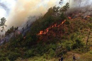 Nghệ An: Nhiều bất cập trong phòng chống cháy rừng
