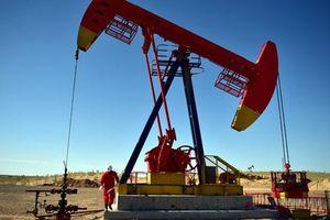 Dầu đá phiến của Mỹ tăng kỷ lục gây sức ép lên giá dầu